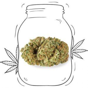 erba legale Gelato CBD Canapa light cannabis